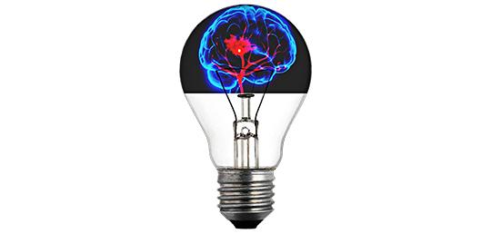 사이코패스의 뇌구조는 어떻게 되어있을까?