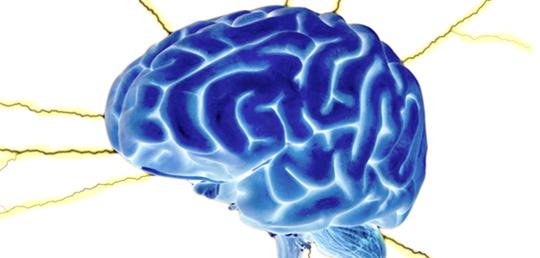 단일 유전자 조작으로 나이든 뇌를 젊게?!