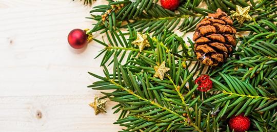 크리스마스 트리 증후군은 무엇인가