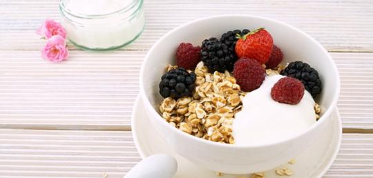 채식주의자 및 비건(vegan)은 비타민 B<sub>12</sub>를 어떻게 섭취할까
