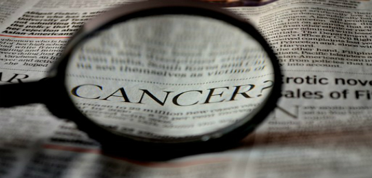 2018년 8월에 발표된 암 연구 리뷰